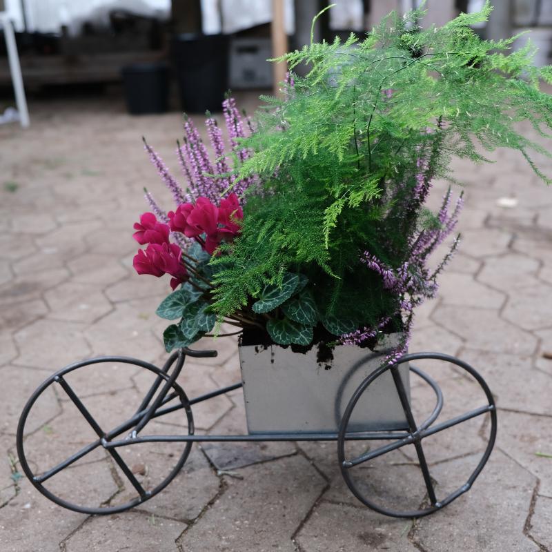 Cykel inkl. planter: kr. 250 FGU-skolen i Køge